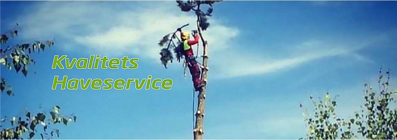 Kvalitets Haveservice, TOPKAPNING, træfældning, beskæring, græsslåning m.m.